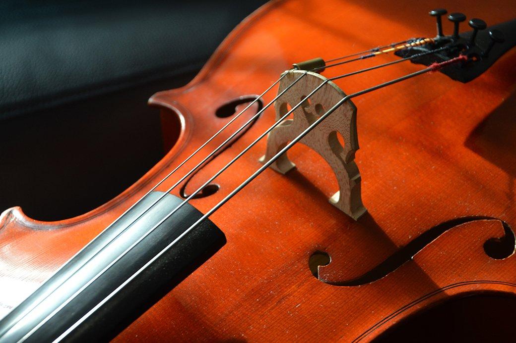 Ansicht einer Violine (Instrument)