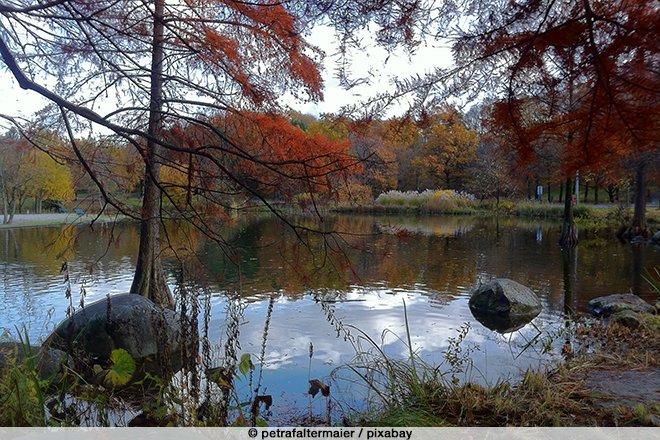 See im Westpark im Herbst