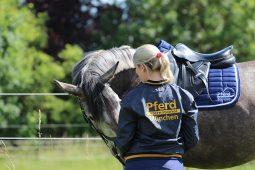 Pferd International, 0820Hippo_1