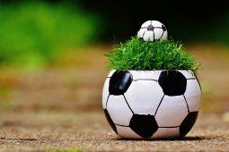 Fußball, Public-Viewing, Fußball_Public_Viewing_alg1040x693